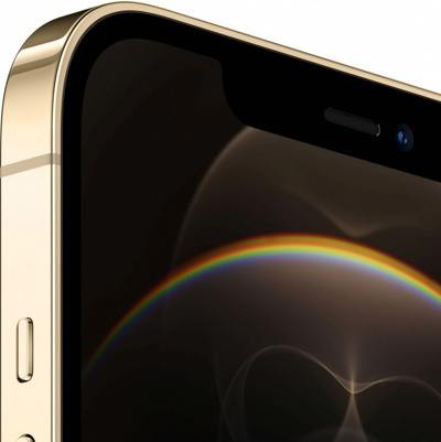 Смартфон Apple iPhone 12 Pro 256Gb Gold  — фото